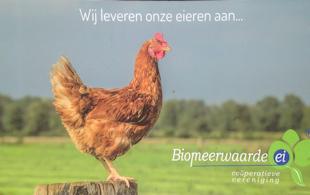 Biomeerwaarde ei